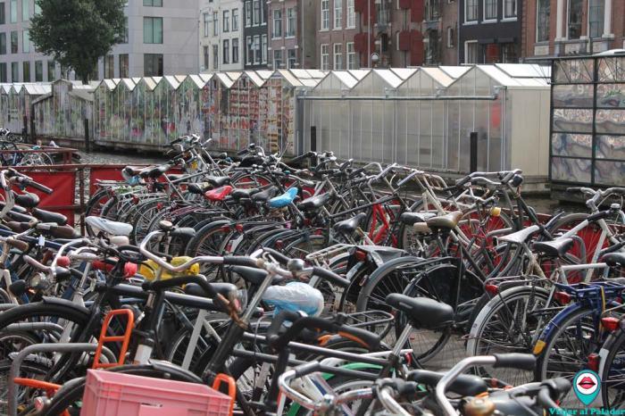 bicicletas-Amsterdam