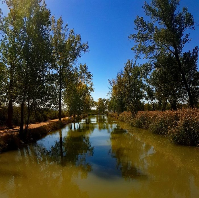 canal-de-castilla-medina-de-rioseco