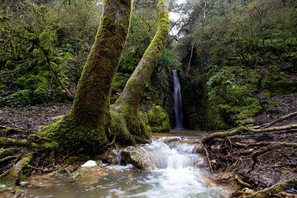 ruta-cascada-diablozulo-navarra